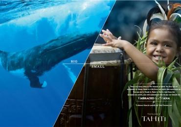 tahiti-campaign-overview_2.1-8.jpg