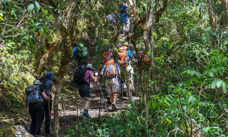 Hiking on the Classic Inca Trail