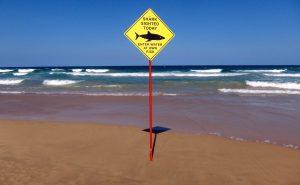 2017-01-27t074158z_1437498831_rc1861fe4750_rtrmadp_3_australia-sharkattack-tourism-300x185.jpg