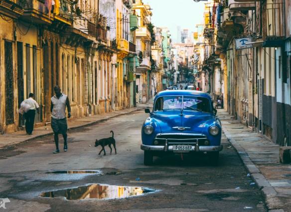 2013, CUBA, ROARK