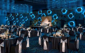 dtgu_meeting_grand-ballroom-300x185.jpg