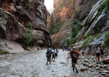 zion-national-park-2017-record-tourism.jpg