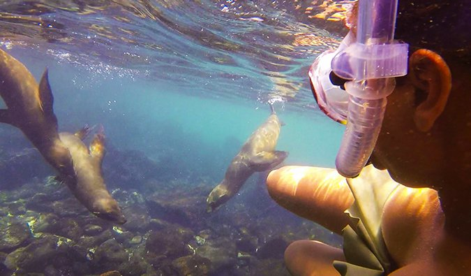 Heather snorkeling in the Galapagos