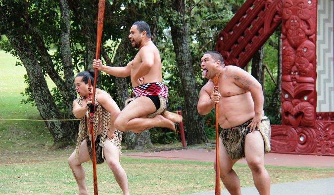 Traditional Maori cultural dance show in NZ