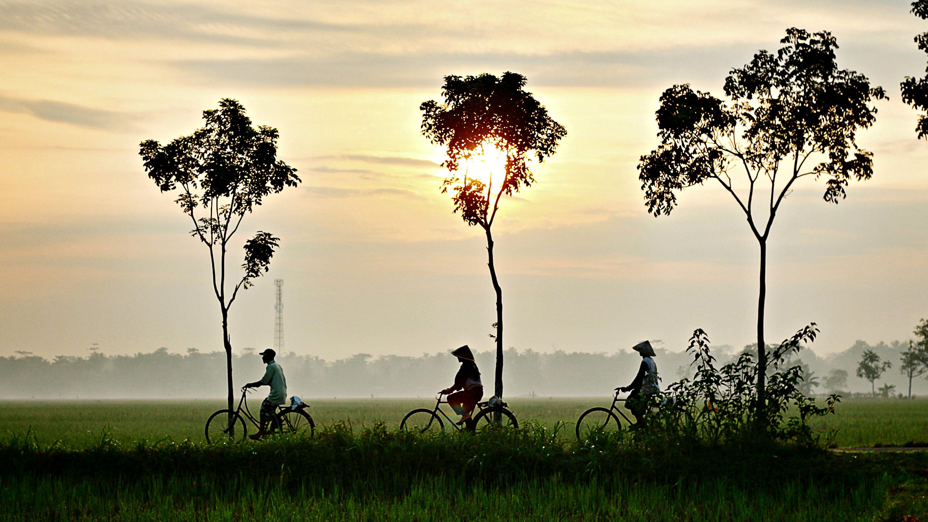 vietnam_bike1.jpg