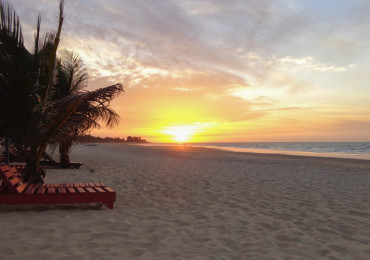 Sunbed and palm trees on sandy beach during scenic sunset